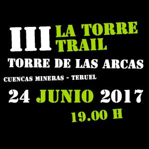 logo_2017_sintorre-verde