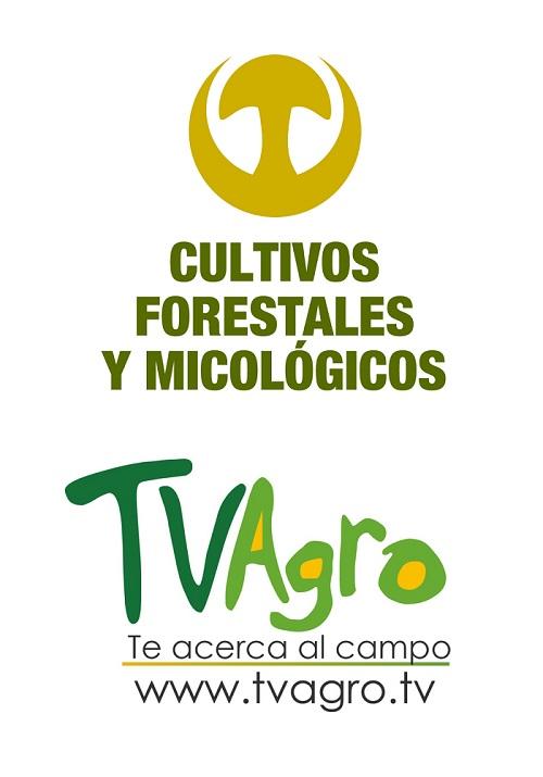 Logos_CFM_y_TV_Agro