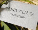 Logo_Maria Aliaga